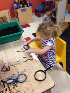 A Sunshine Nursery School summer camp participant is taking a closer look at worms.